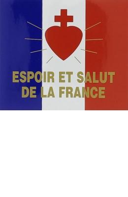 Espoir et salut de la france autocollant pour pare brise abbaye du barroux - France pare brise bordeaux ...
