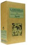Camomille romaine —  — (Chamaemelum nobile)