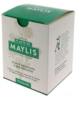 Plante de Maylis en tisane