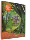 La Vie secrète des arbres —  Édition illustrée