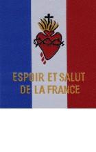 Fanion Espoir et Salut de la France (tissu)